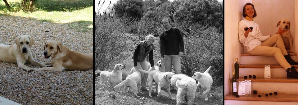 Dominique et Franck Martino avec leurs chiens